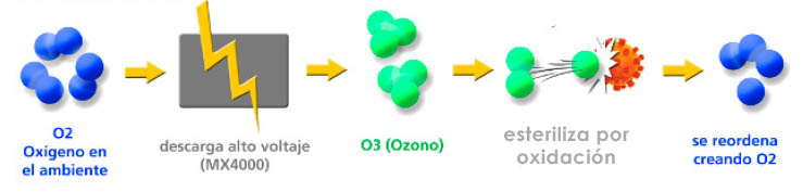 esterilizador de oxono